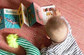 Top 10 des livres pourbébés